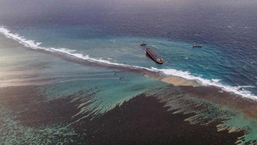 C'est dans ta nature - Après la marée noire à Maurice, inquiétudes pour la biodiversité