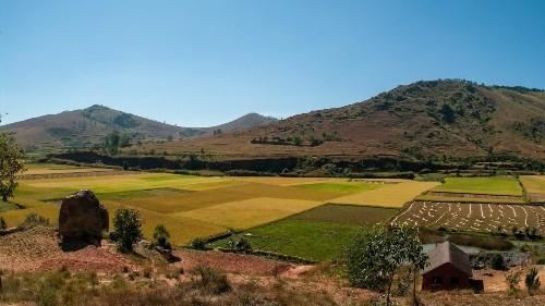 Madagascar, pays le plus affecté par la destruction de l'environnement