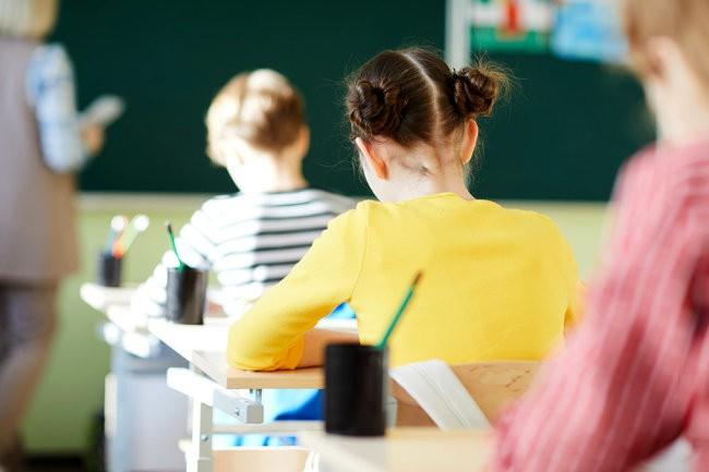 В ДВФУ придумали план быстрого перехода школ на дистантанционное обучение