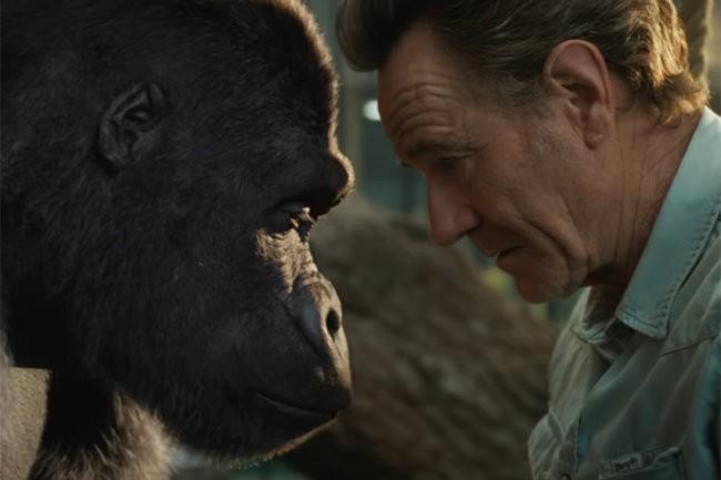Вышел трейлер фильма с Крэнстоном, Джоли и ДеВито про гориллу Ивана