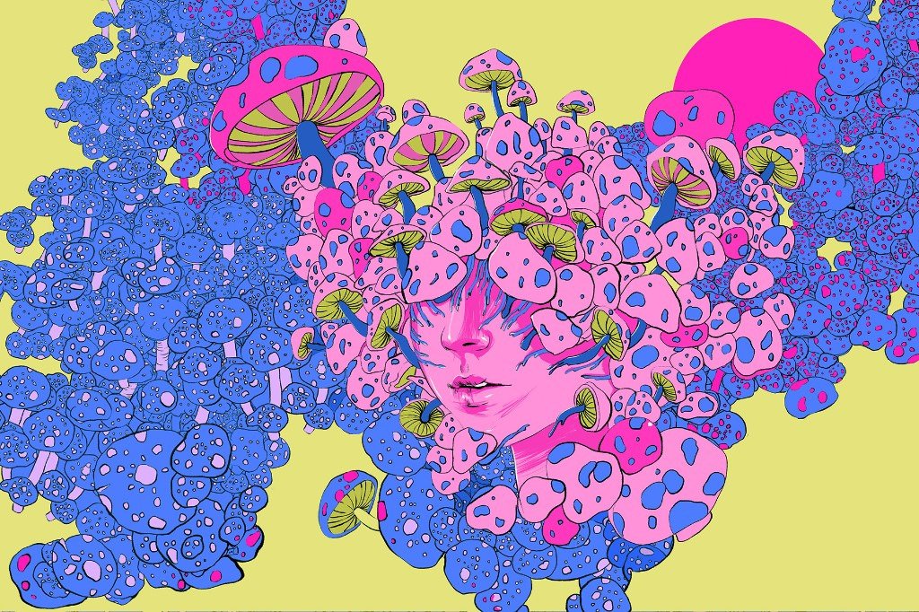 Inside 9/20, the Holiday for Psychedelic Mushrooms