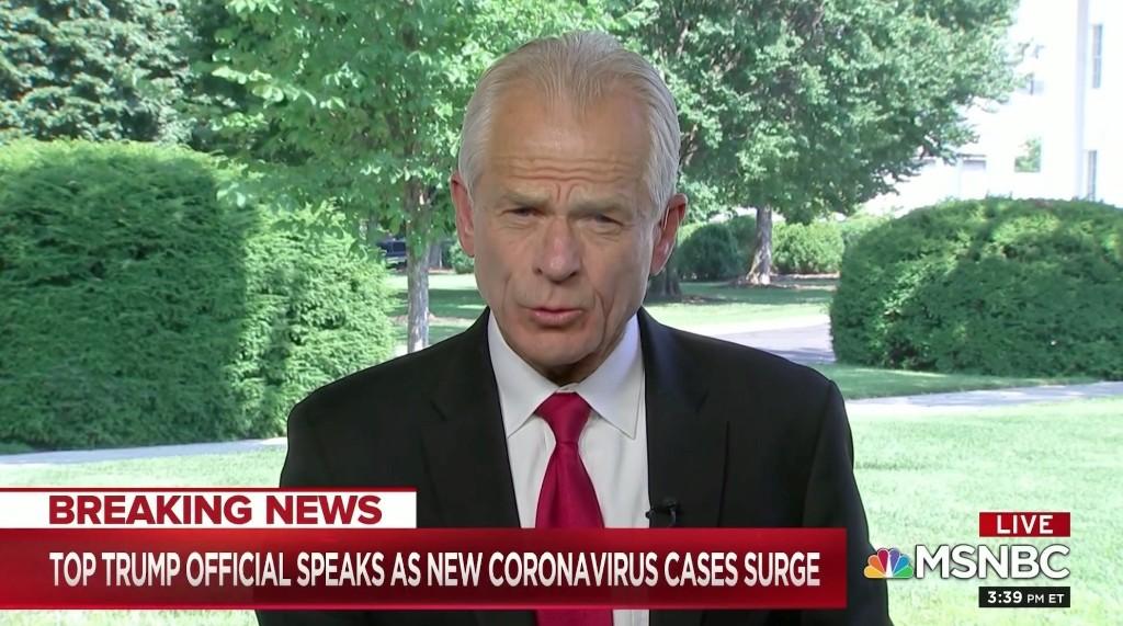 Watch Trump Advisor's Bonkers Rant Pushing COVID-19 Conspiracies