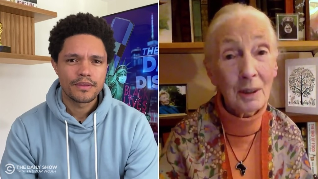 Jane Goodall Offers Hope for a Better Future on 'The Daily Show'