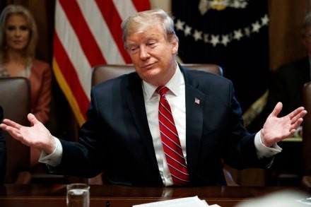 Trump Again Caves, This Time for Even Less Wall Money (Art of the Deal, Folks)