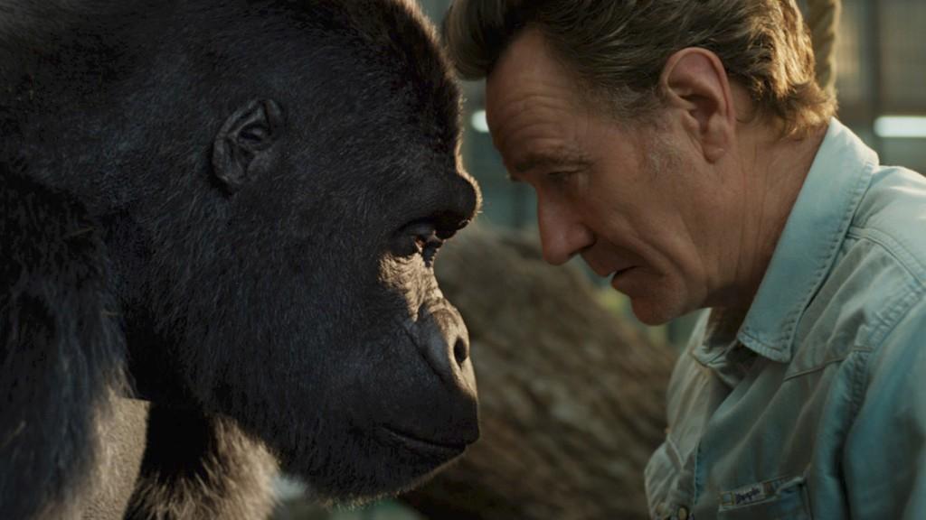 Watch Bryan Cranston Befriend a Gorilla in 'The One and Only Ivan' Trailer