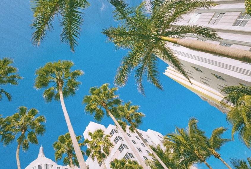 Sink or swim: Miami's perilous future facing climate change