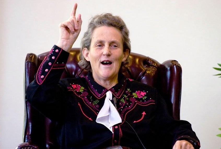 Temple Grandin: intelligence has a steep price