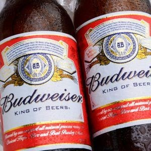 4 reasons never to drink Budweiser ever again