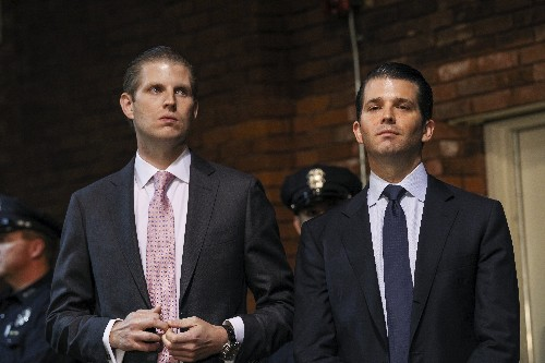 Seeing green in red-state America: Donald Trump's sons want his supporters to stay in his hotels