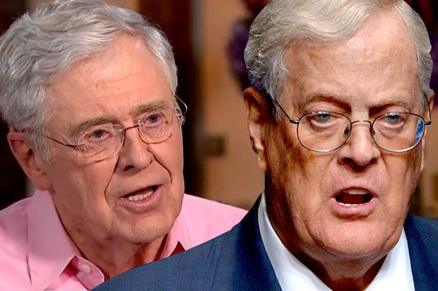 The Kochs are brainwashing us: Inside the billionaire industrialists' chilling economics curriculum