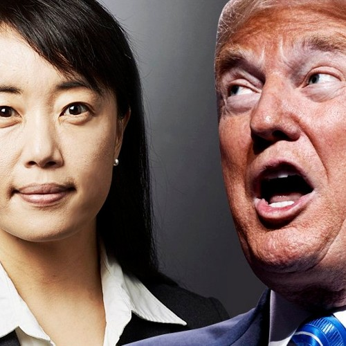 "Yale psychiatrist Bandy Lee: Trump's mental health is now a ""national and global emergency"""