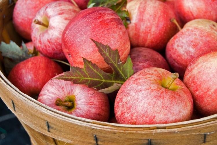 Hail the versatile fruit! Your best apple recipes