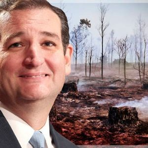 President Ted Cruz's dystopian America: The scorched hellscape of a climate-denying White House