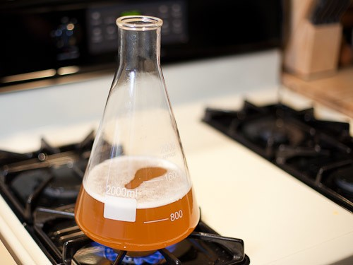 Homebrewing: How to Make A Yeast Starter