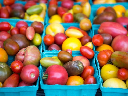 The Serious Eats Tomato Shopping Guide