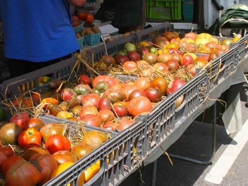 Gallery: Market Scene: Hyde Park Farmers Market in Cincinnati, OH