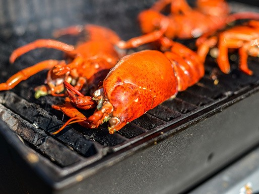 Grilled Lobster With Lemon-Shallot Butter Recipe