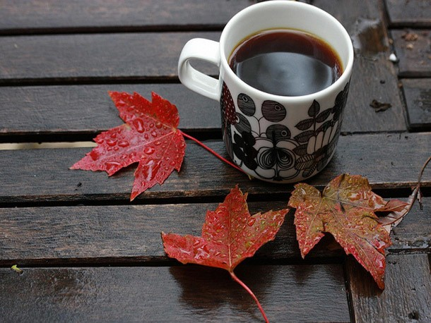 4 Great Seasonal Coffees to Drink This Fall