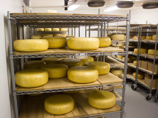 'Cheddar is a Verb:' Behind the Scenes at Grafton Village Cheese in Vermont