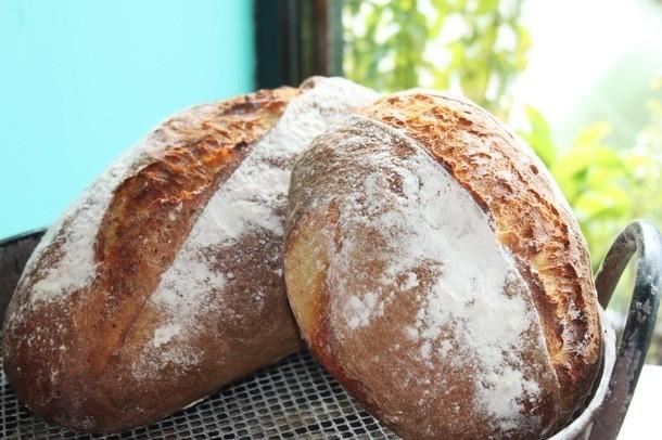 In Pursuit of the Golden Potato Bread of Ballinspittle, Ireland