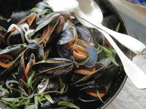 Mussels in Cider With Dijon, Crème Fraîche, and Tarragon From 'A Boat, a Whale & a Walrus'