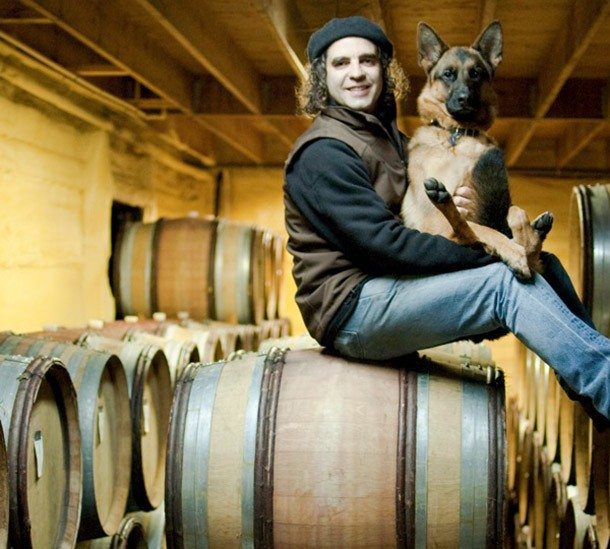 Get to Know 19 Winery Dogs and Cats