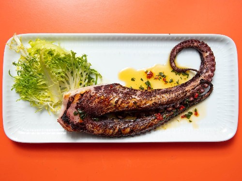 Grilled Octopus With Chili-Herb Oil Recipe