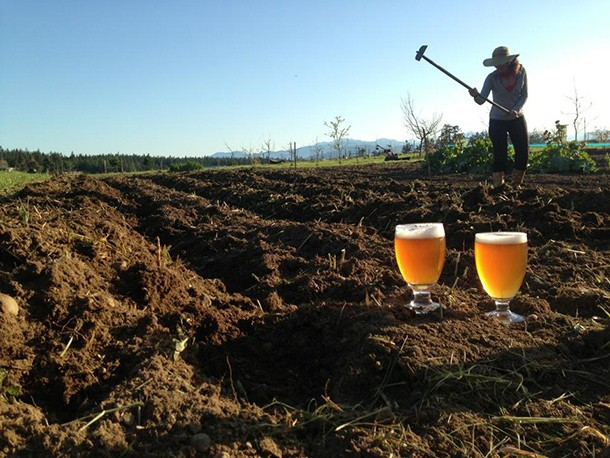 Brewery to Watch: Propolis Brewing, Port Townsend, WA