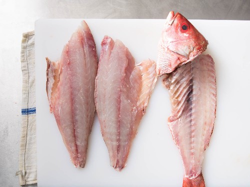 How to Fillet a Fin Fish