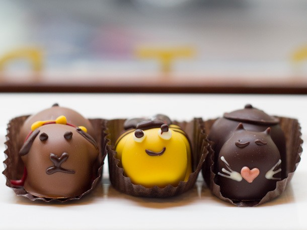 Sugar Rush: Animal Truffles at Moonstruck Chocolate Cafe, Portland