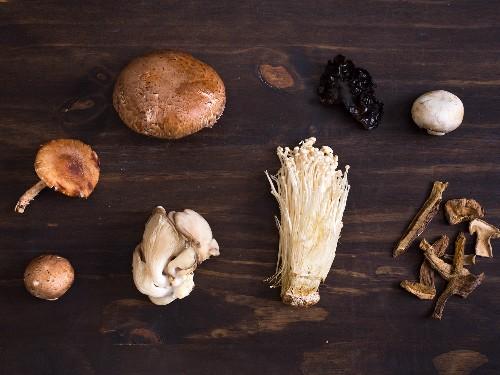 The Serious Eats Mushroom Shopping Guide