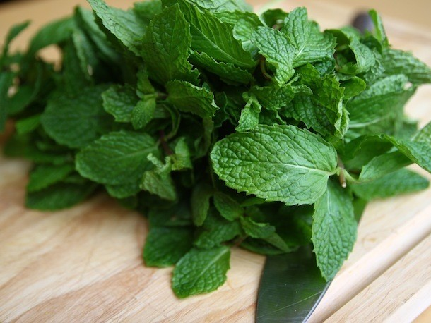 Knife Skills: How to Chiffonade Mint and Other Leafy Herbs