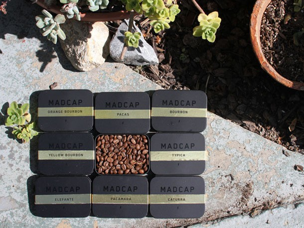 Higher Coffee Learning With MadCap Coffee's Varietals Series