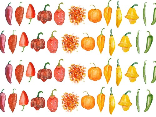 So Hot Right Now: 11 Chilies You Should Know