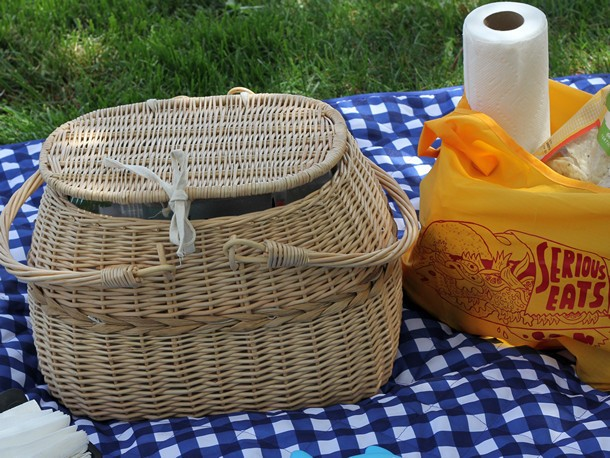 Pack Your Picnic Basket Like a Pro: Essential Gadgets for Your Next Outing