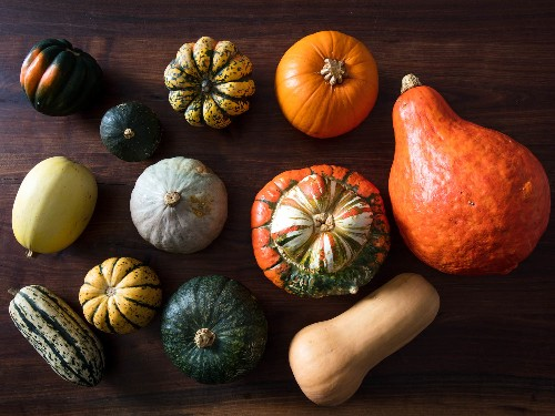 Gallery: Sweet Technique: How To Make Pumpkin Puree