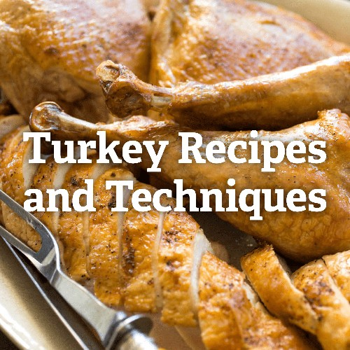 Turkey Recipes and Techniques