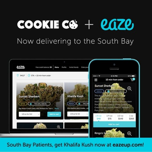 Marijuana tech startups roll out, hit potholes