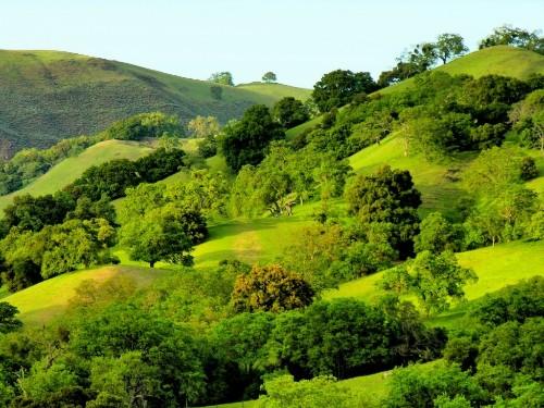 Stienstra: Bay Area outdoor bests (pics)