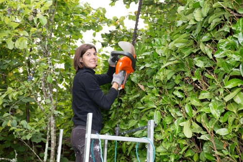 Reclaim Your Space! How to Tame an Overgrown Yard