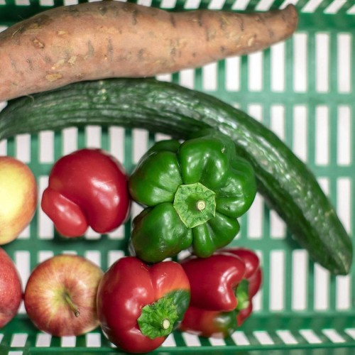 Gegen den Klimawandel : Wie Sie Lebensmittel bewusst einkaufen und lagern