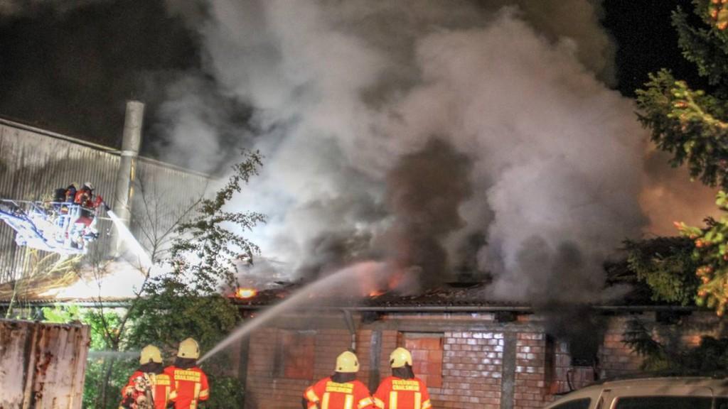 Feuer in Stall – bis zu zehn Millionen Heuschrecken gestorben