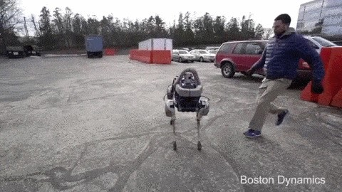 来看看谷歌新造的呆萌机器狗 Spot