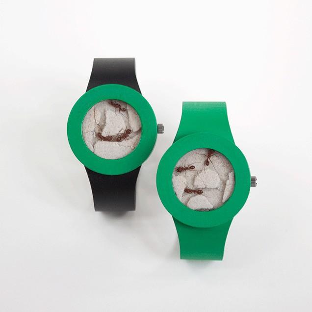 AppleWatch 弱爆了,这款手表里装着蚂蚁!活的!