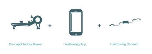 Live Rowing Is An App and Rowing Machine Monitor That Lets You Challenge Your Friends To A Boat Race