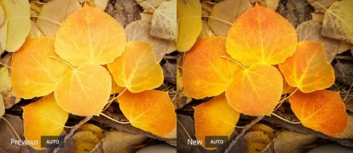Adobe Lightroom's auto setting is now powered by AI