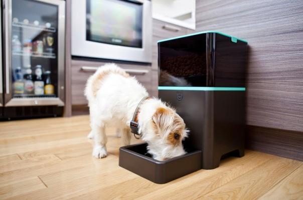 Petnet Raises $1.125M To Make A Smart Food Dispenser For Your Furry Friends