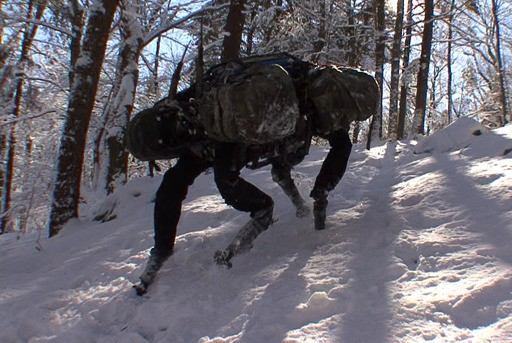Google Buys Boston Dynamics, Creator Of Big Dog