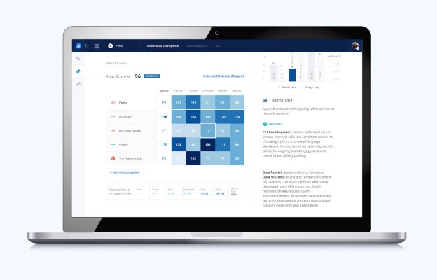BlueOcean uses automation to deliver affordable brand audits in seven days