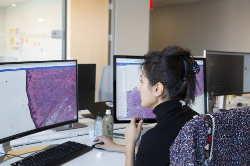 Paige details first AI pathology tech with clinical-grade accuracy in new research paper